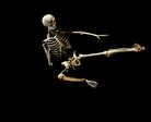 bone 34